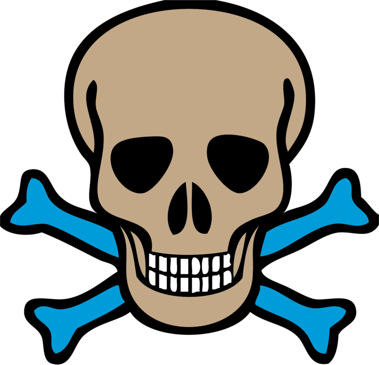 Skull and crossbones Pirate Skull and Bones Human skull symbolism