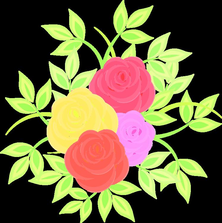 Art,Garden Roses,Petal