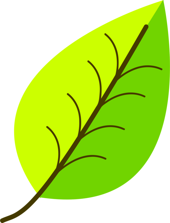 Plant,Leaf,Artwork