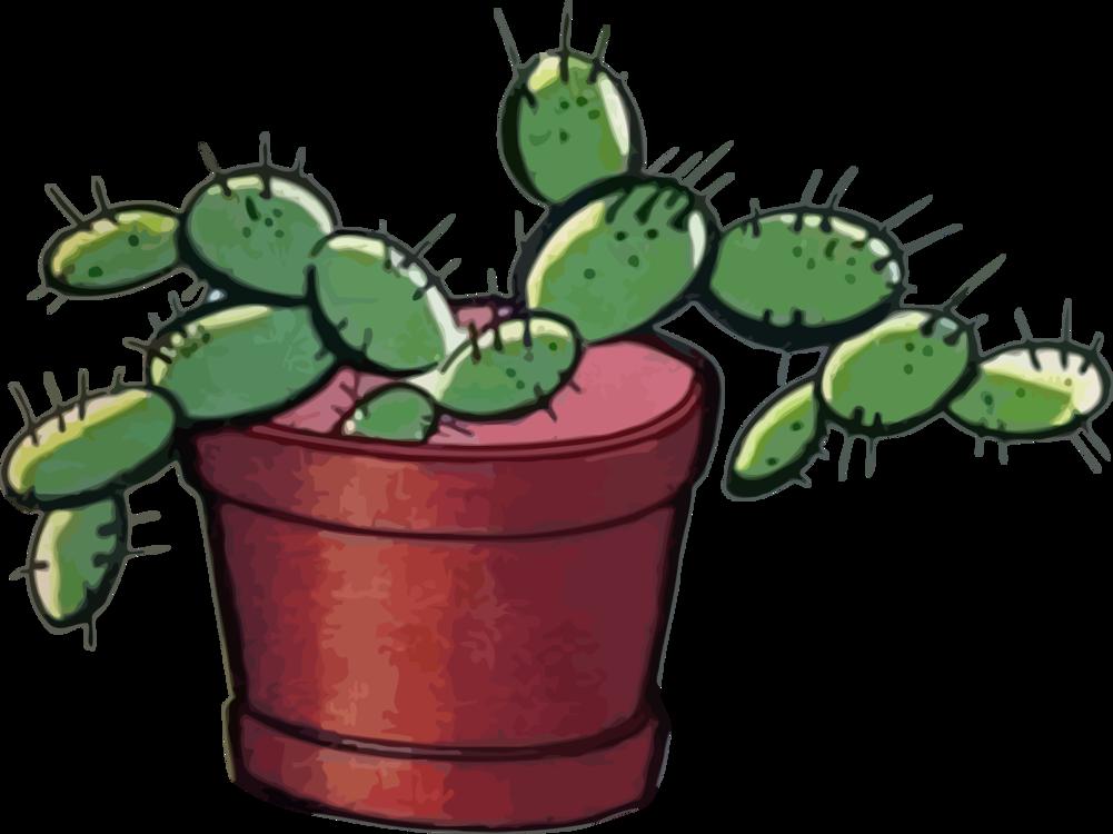 Plant,Flowerpot,Invertebrate