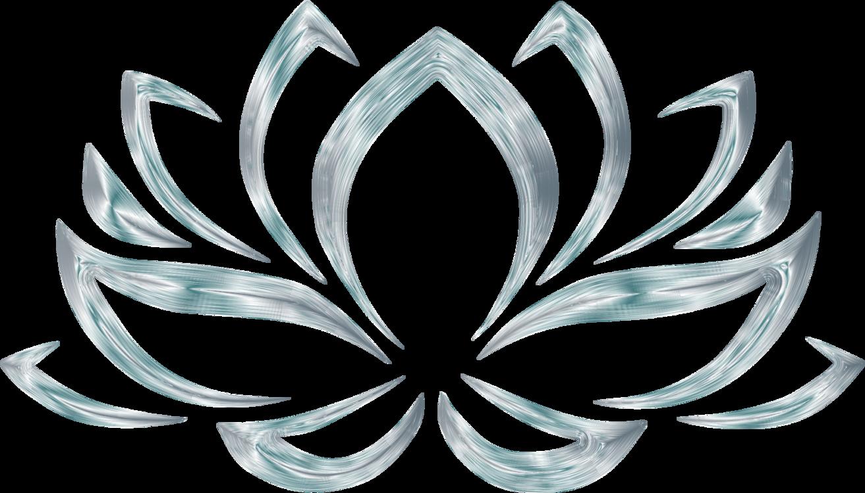 Sacred Lotus Flower Egyptian Lotus Nymphaea Lotus Cc0 Petalcircle