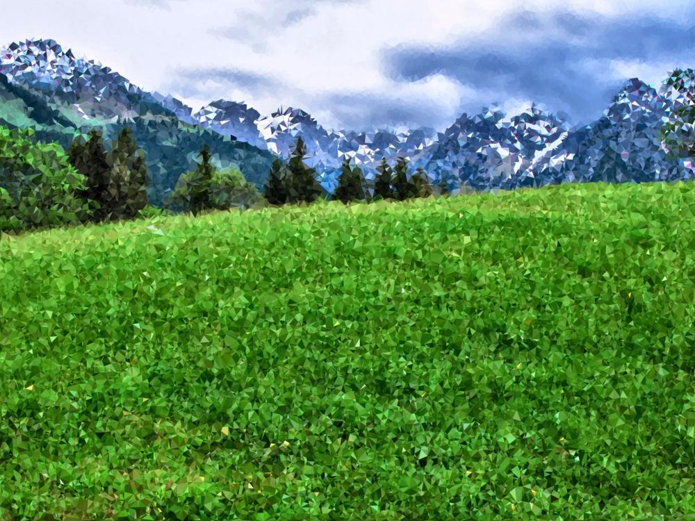 Meadow,Wilderness,Crop