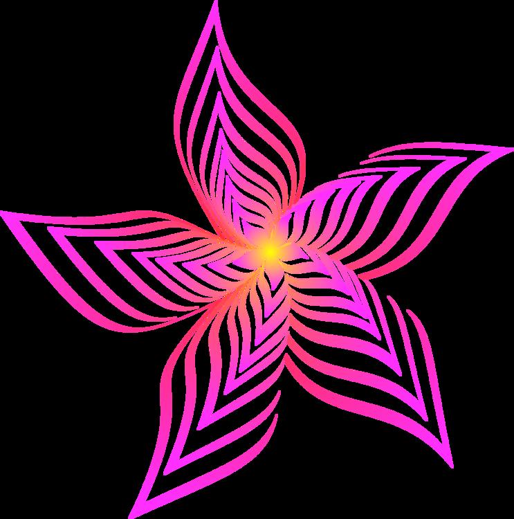 Symmetry,Petal,Violet