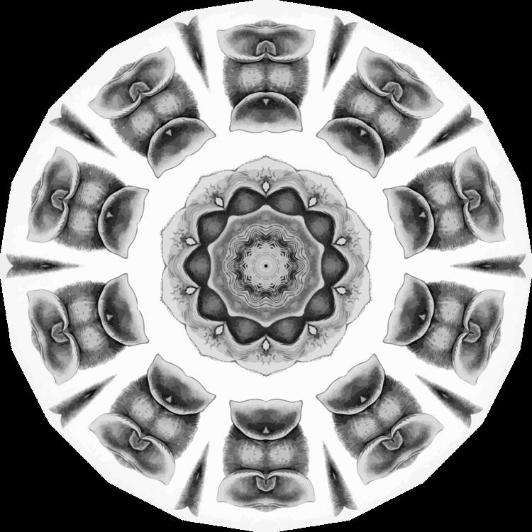 Wheel,Spoke,Symmetry