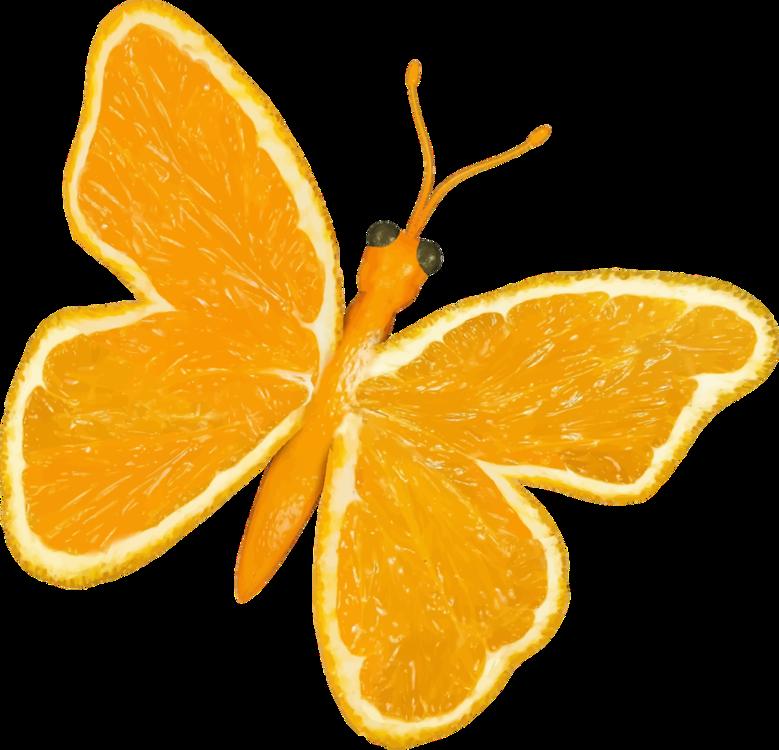 Butterfly,Mandarin Orange,Vegetarian Food