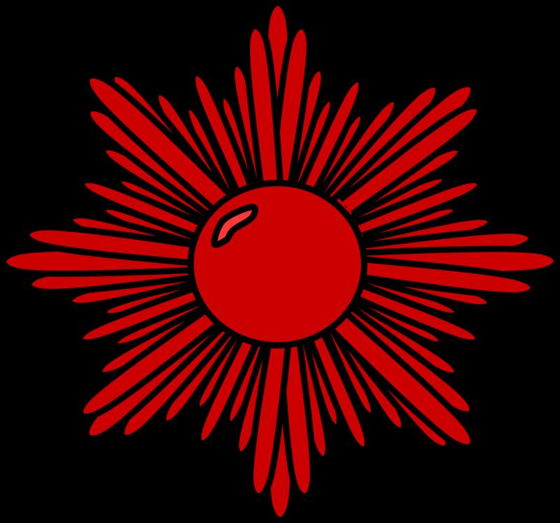 Flower,Symmetry,Petal