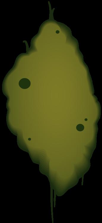 Leaf,Fruit,Green
