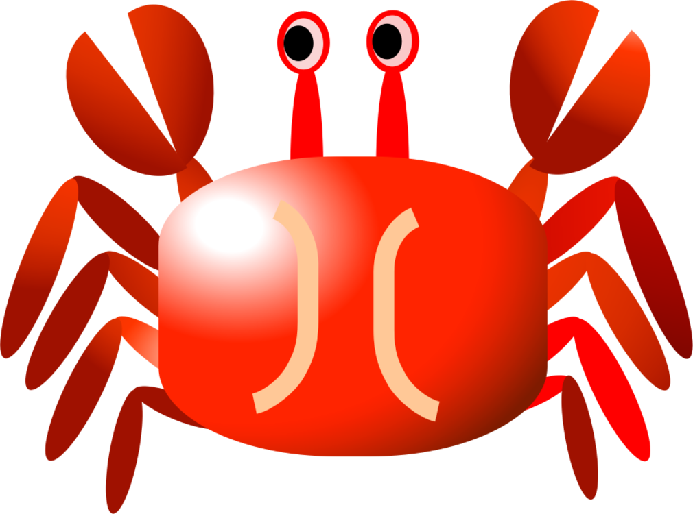 Decapoda Seafood Dungeness Crab Png Clipart Royalty Free Svg Png