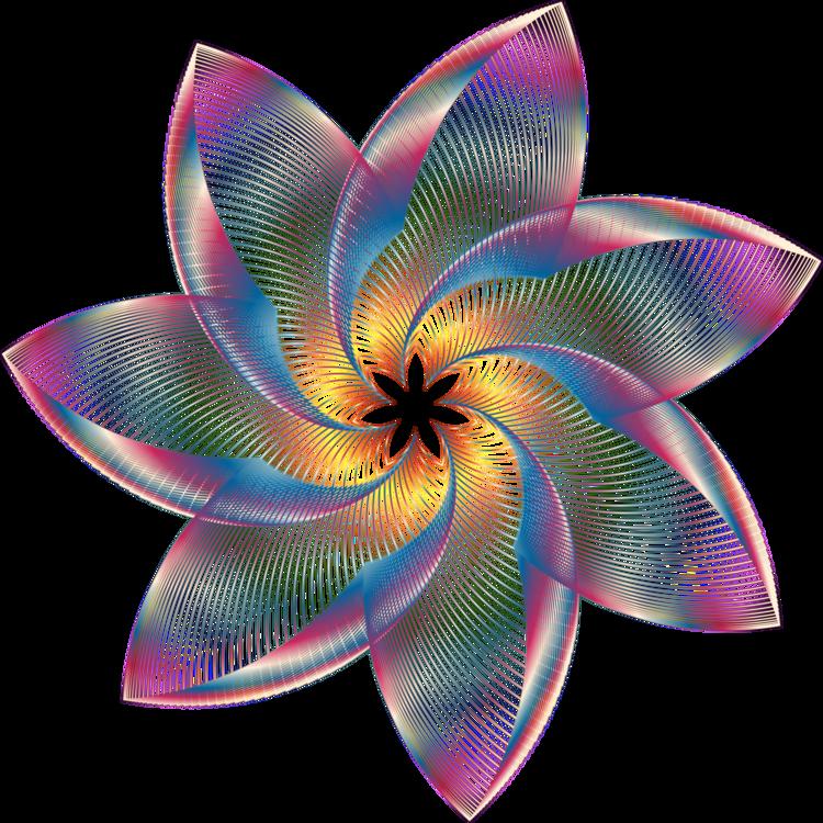 Pink,Petal,Spiral