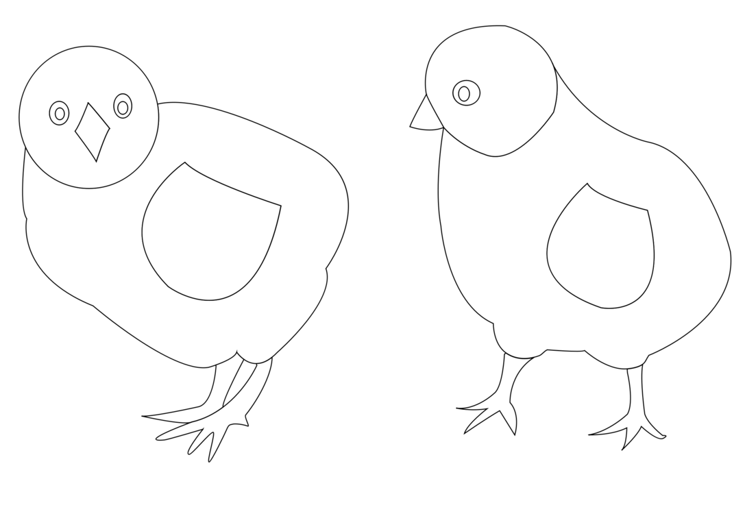 chicken coloring with your octopus a coloring book for domesticated