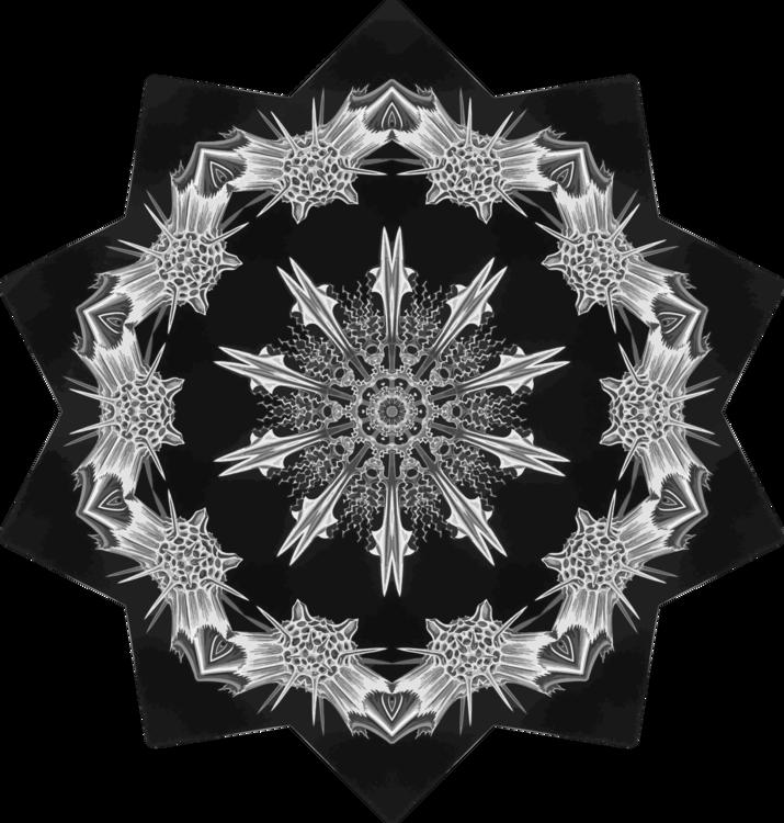 Visual Arts,Symmetry,Monochrome Photography