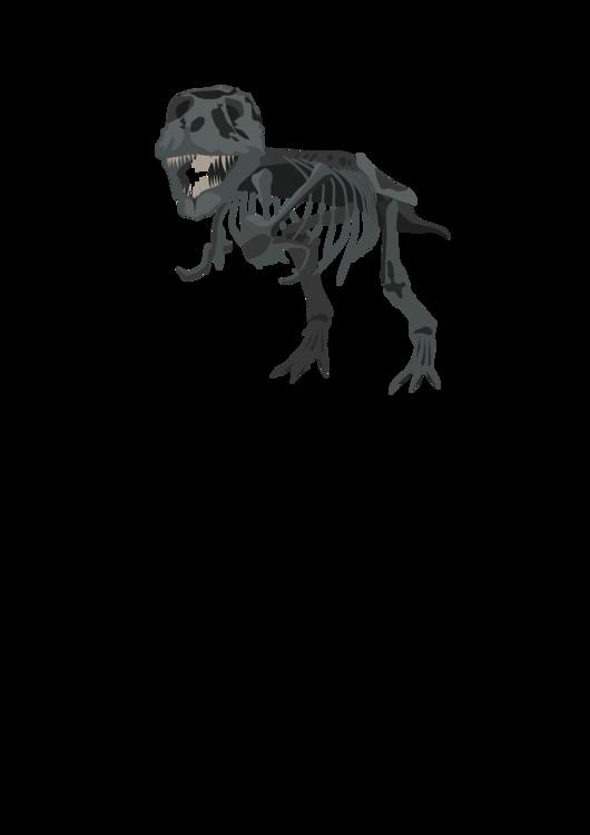 Velociraptor,Tyrannosaurus,Dinosaur