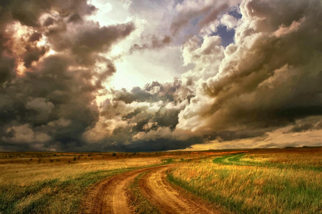 Atmosphere,Meadow,Crop