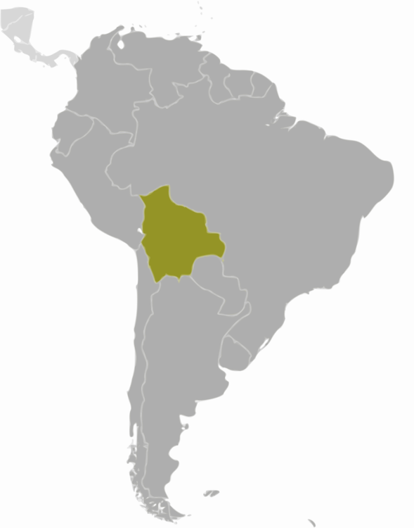 Map,Chile,Peru