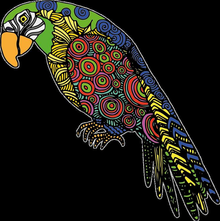 Bird Of Prey,Macaw,Parrot