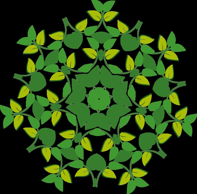 Leaf Floral design Flower Shape Point