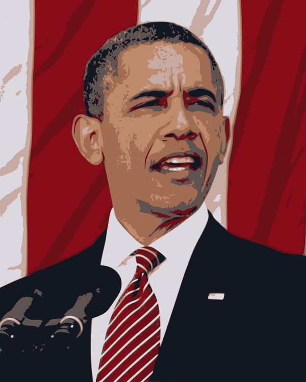 barack obama presidential campaign 2012 president of the united