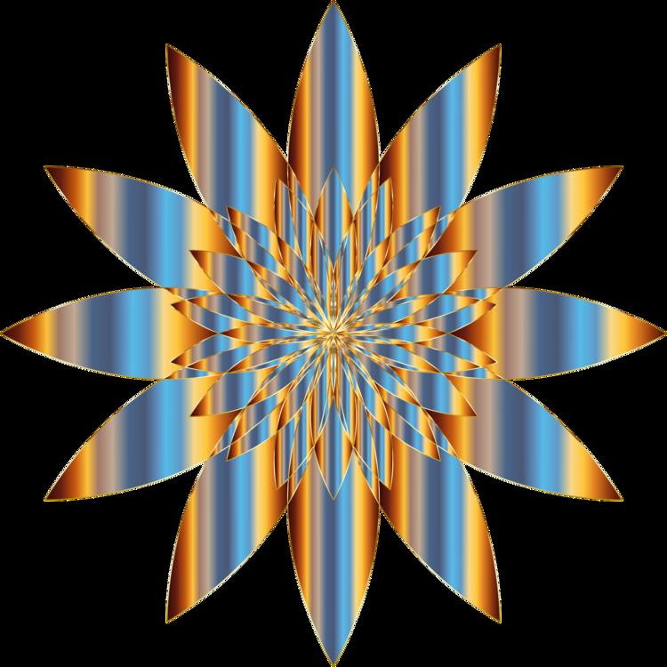 Flower,Symmetry,Line