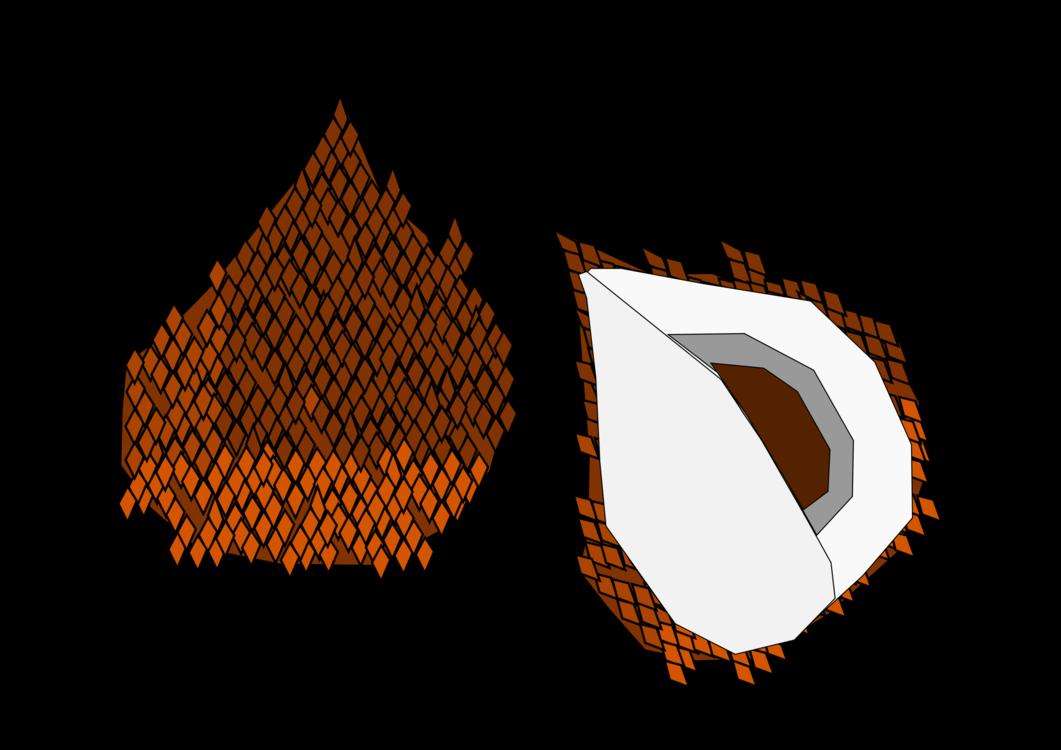 Triangle,Tree,Leaf