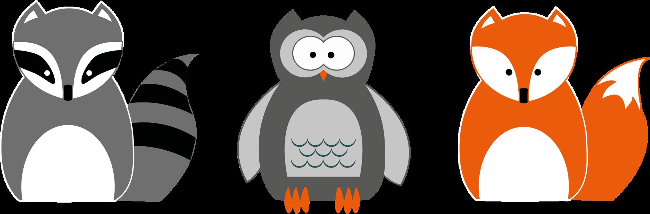 Flightless Bird,Beak,Vertebrate