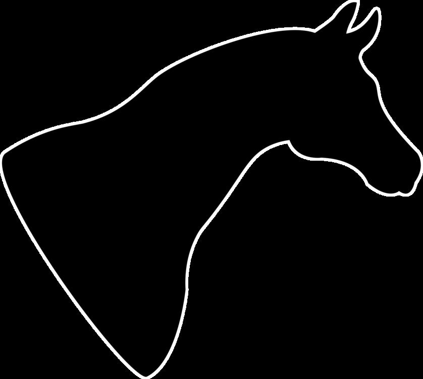 Pony,Horse Tack,Dog Like Mammal