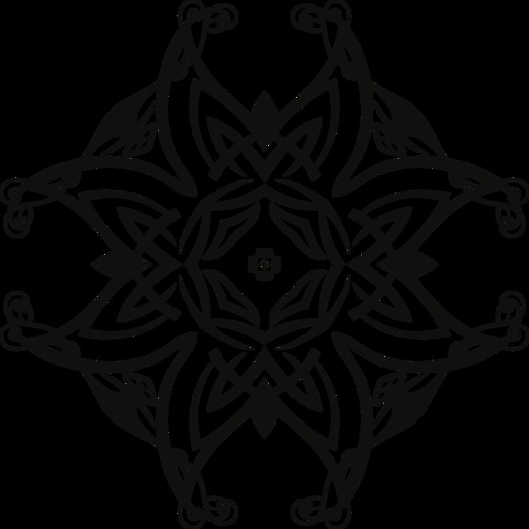 Symmetry,Monochrome Photography,Plant