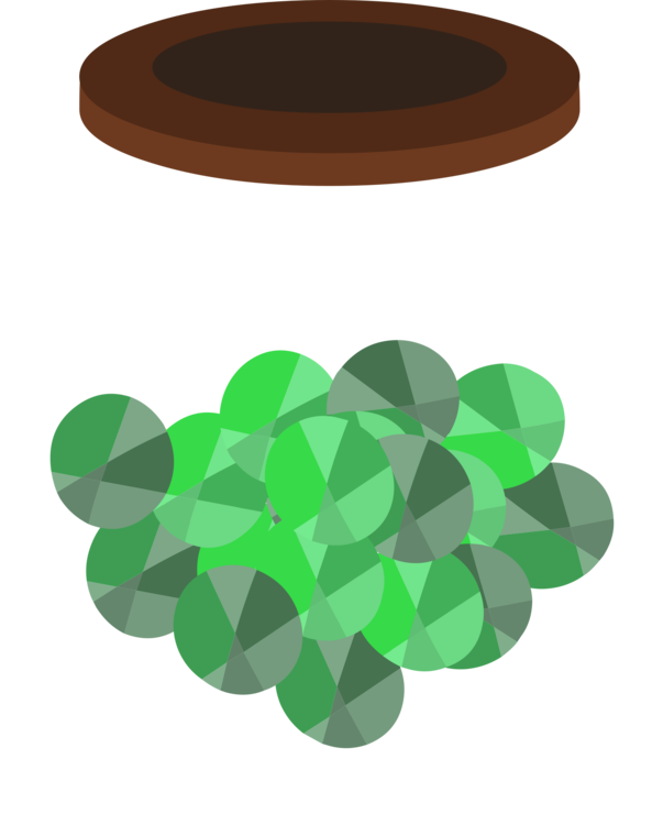 Shamrock,Leaf,Green