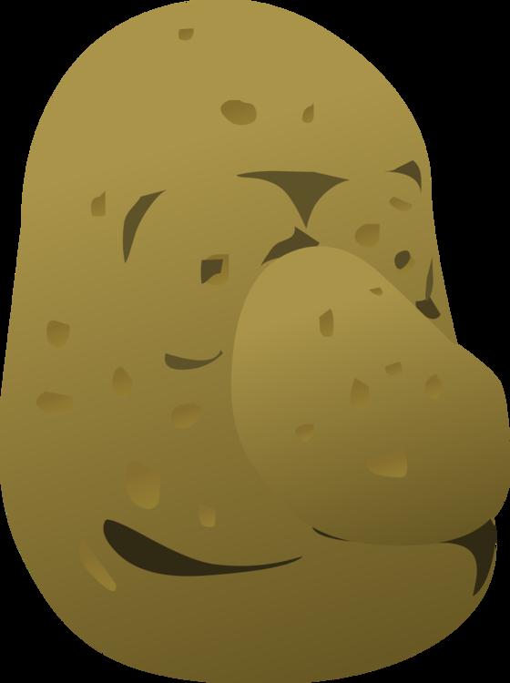 Organism,Yellow,Baked Potato