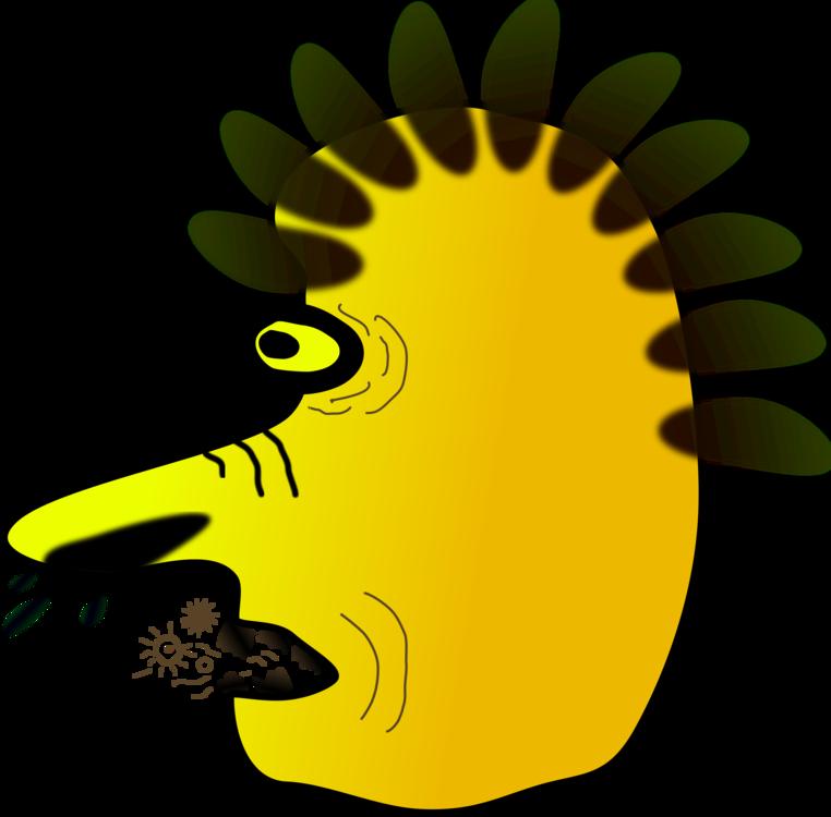 Plant,Flower,Beak