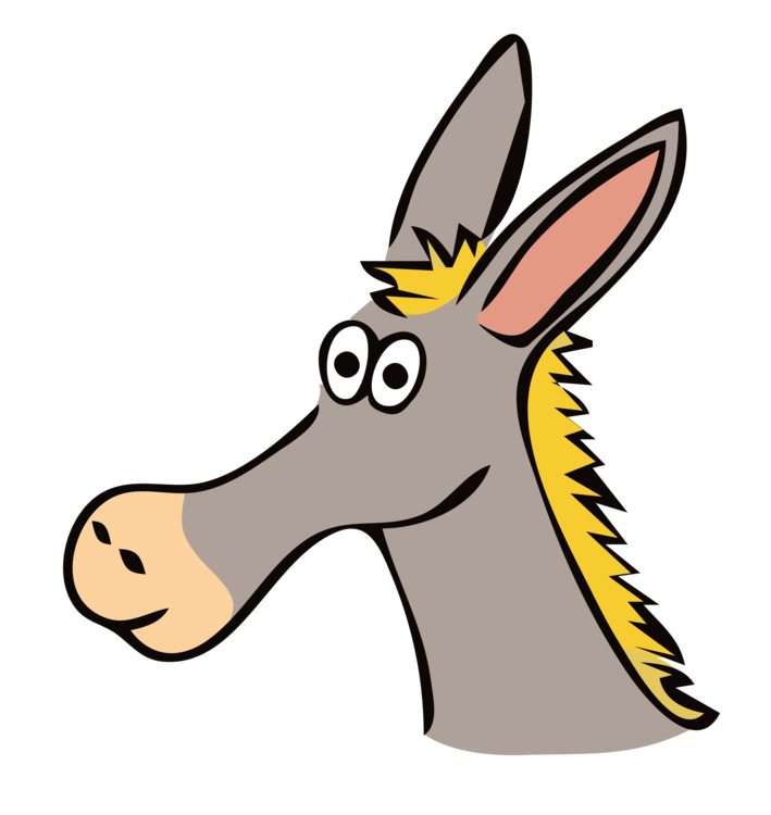 Head,Horse Like Mammal,Donkey