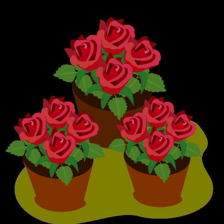Cake Decorating,Garden Roses,Petal