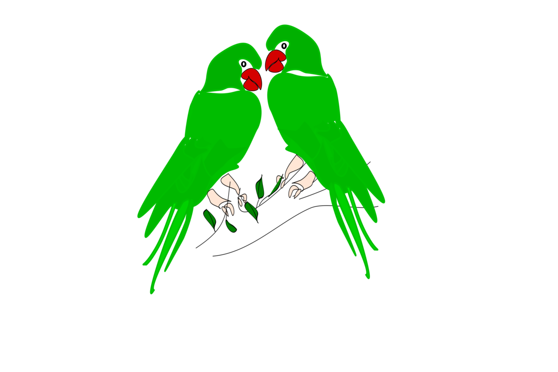 Macaw,Parrot,Tree