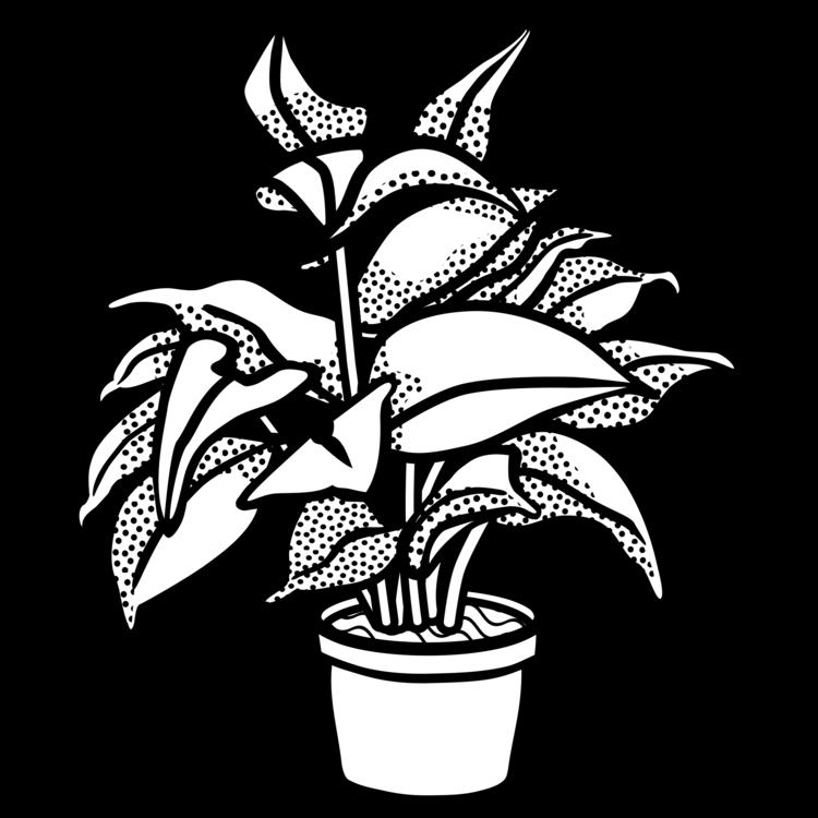 Drawing Flowerpot Houseplant Plants Line Art Free Commercial Clipart