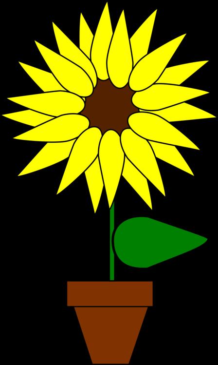 Sunflower Seed,Line Art,Plant