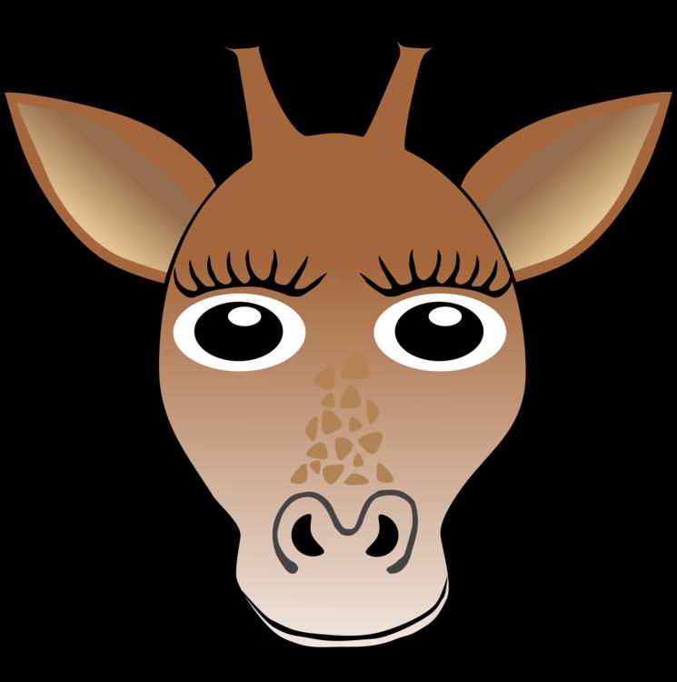 Giraffidae,Head,Neck