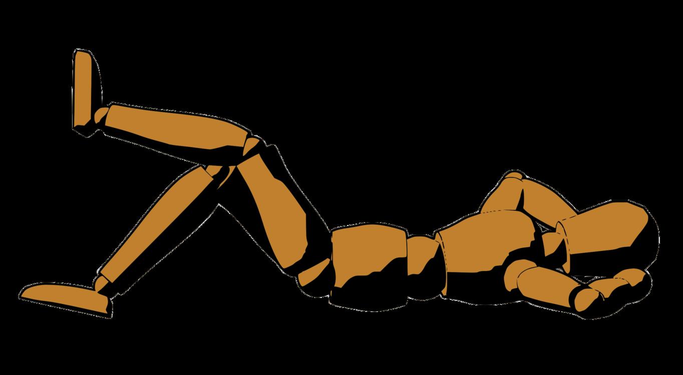 Muscle,Angle,Leg