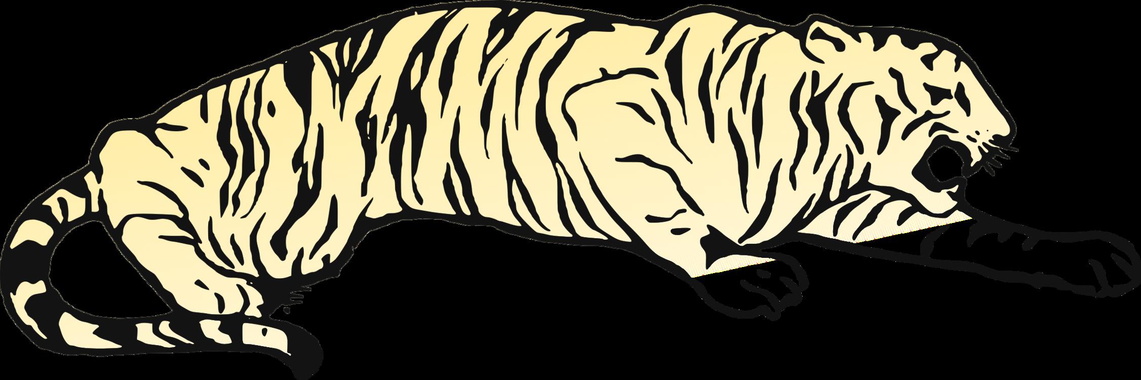 whiskers cat golden tiger bear bengal tiger free commercial clipart rh kisscc0 com bengal tiger head clipart Bengal Tigers Football