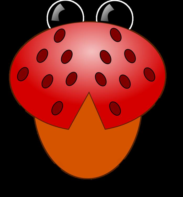 Food,Ladybird,Invertebrate