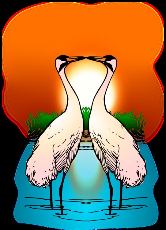 Water Bird,Neck,Joint