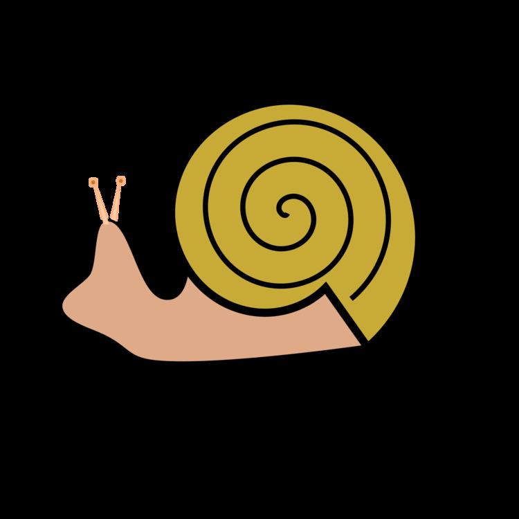 Snail,Area,Artwork
