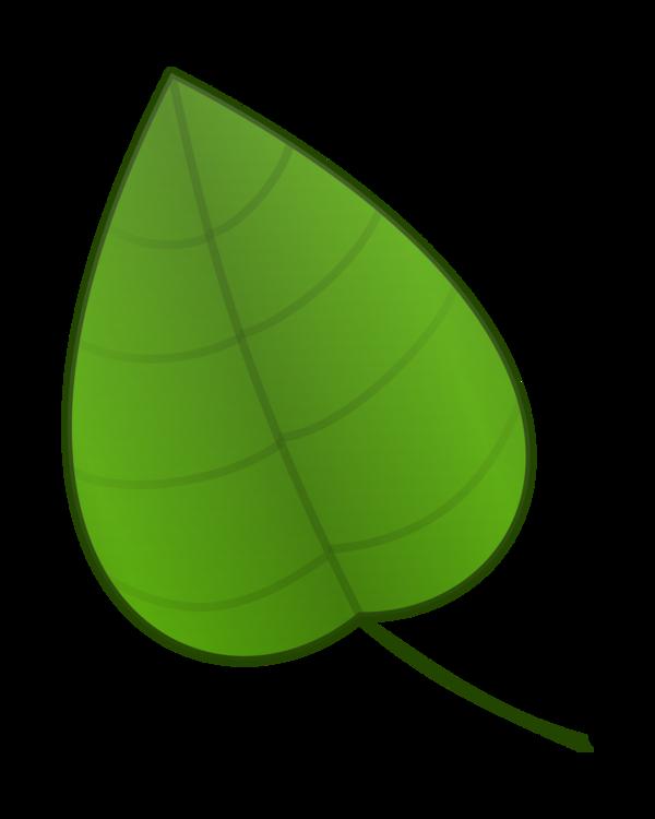 Green,Plant,Grass