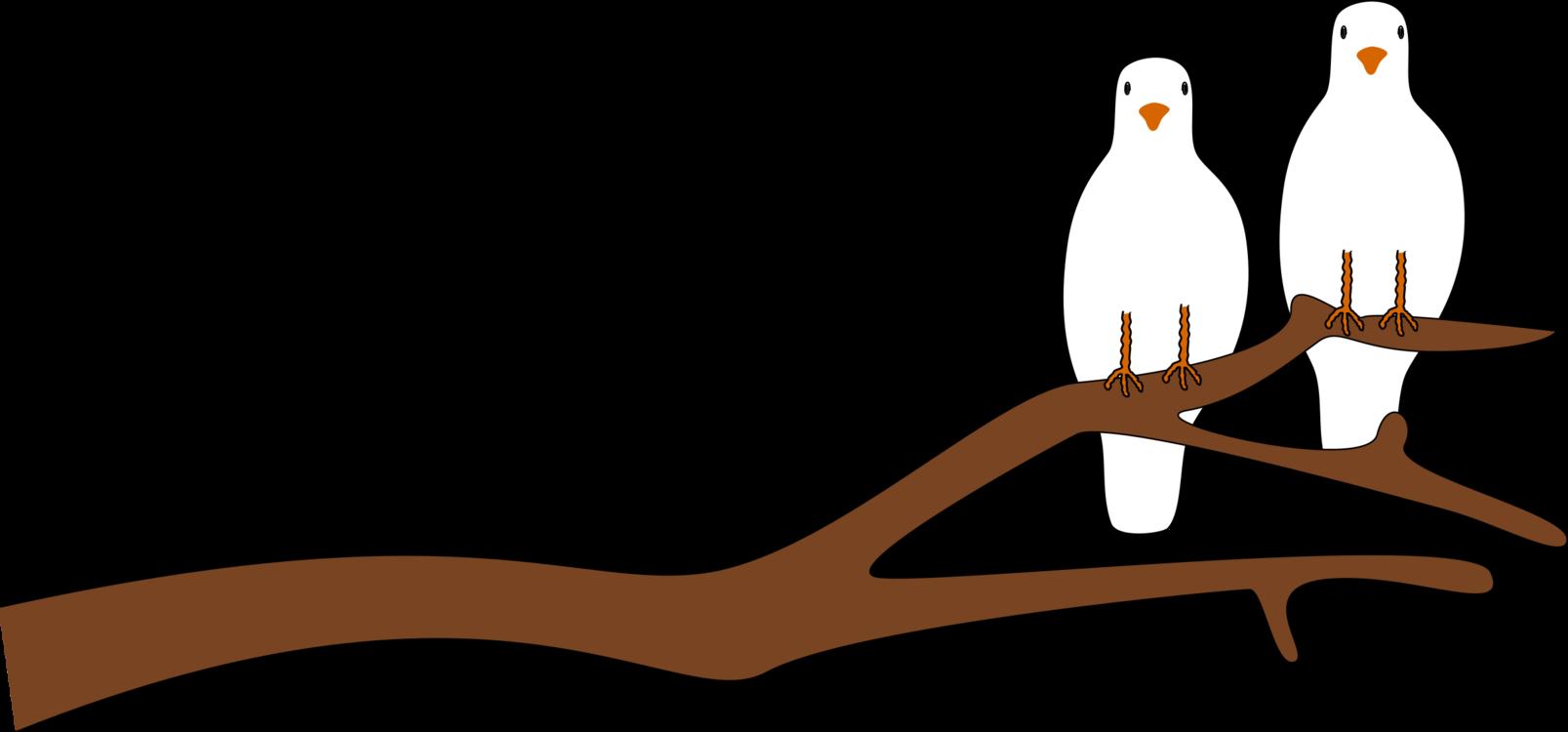 Leg,Tree,Vertebrate