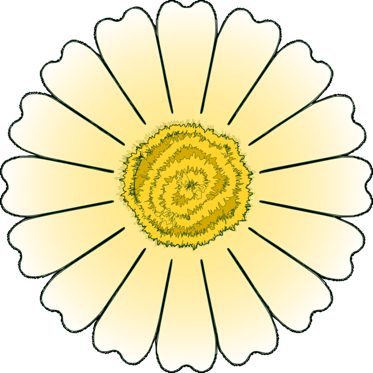 Symmetry,Petal,Yellow