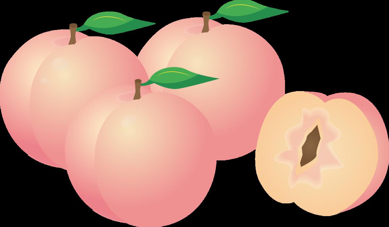 Plant,Apple,Peach