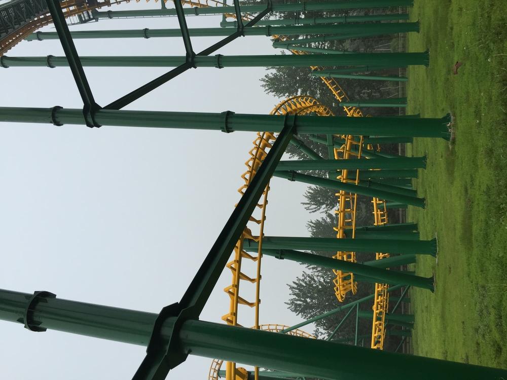 Public utility Tree Line Amusement park