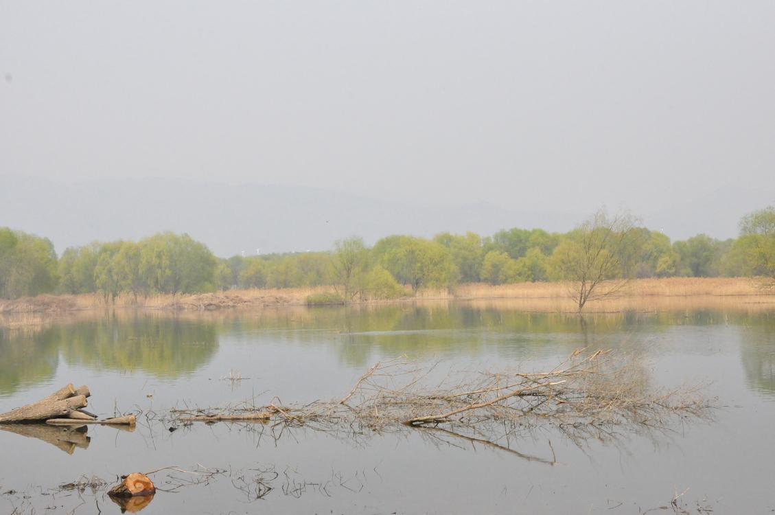 Reservoir,Nature Reserve,Wetland