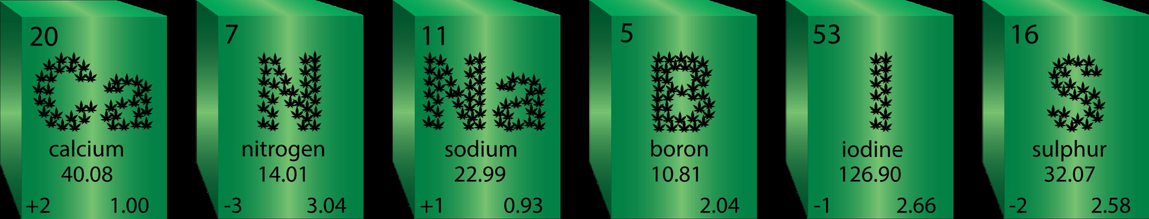 Green,Grass,Cannabis