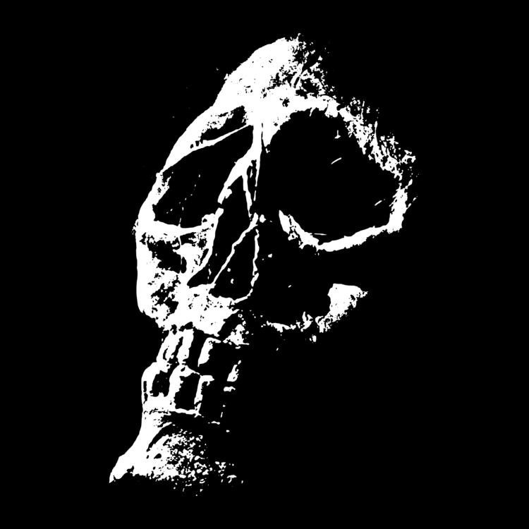 Art,Skeleton,Skull