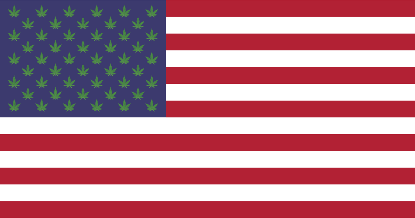 Thirteen Colonies United States of America Flag of the United States ...