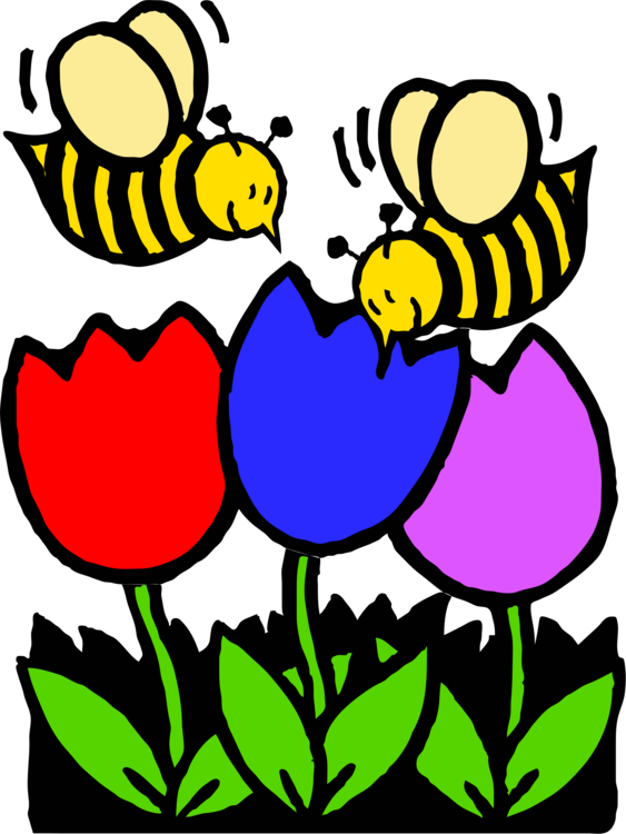 Western Honey Bee Coloring Book Colouring Pages Flower Free
